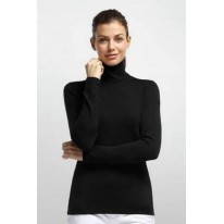Кофта Icebreaker BF 200 Tech LS Turtleneck WMN black S, XS